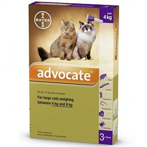Advocate for cat 4-8 kg