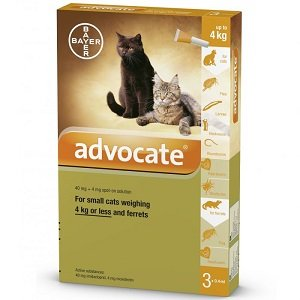 Advocate for cat less than 4 kg and ferret