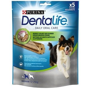 dentallife medium